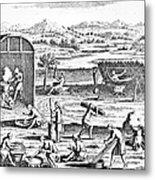 Iroquois Village, 1664 Metal Print