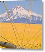 Irrigation Pipe In Wheat Field With Metal Print