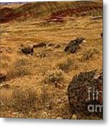 John Day Painted Hills Metal Print