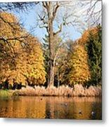 Lazienki Park Autumn Scenery Metal Print