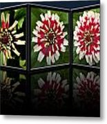 Life Of A Zinnia Metal Print