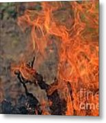 Log Fire And Flames Metal Print
