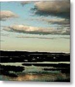 Lowcountry Marsh Front Metal Print