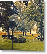 Morning Graze Metal Print