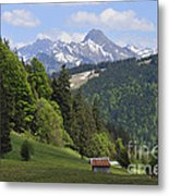 Mountain Landscape In The Alps Metal Print