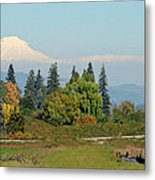 Mt. Adams In The Country Metal Print