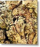 Natural Abstract 44 Metal Print