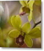 Orchid Tranquility Metal Print