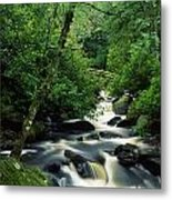 Owengarriff River, Killarney National Metal Print
