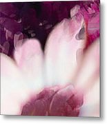Passion Triptych 111 Metal Print