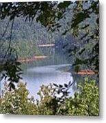 Peekaboo Lake Metal Print
