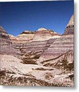 Petrified Forest Blue Mesa Metal Print