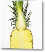Pineapple Ananas Comosus Metal Print