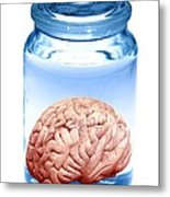 Preserved Brain, Artwork Metal Print