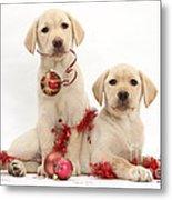 Puppies At Christmas Metal Print