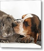 Puppy And Rabbt Metal Print
