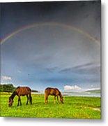 Rainbow Horses Metal Print