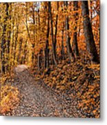 Ramble On Metal Print