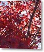 Red Leaves 2 Metal Print