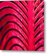 Red Ribs Metal Print