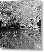 Reflections On The North Fork River In Black And White Metal Print