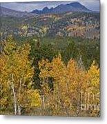 Rocky Mountain Autumn View Metal Print