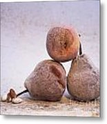 Rotten Pears And Apple. Metal Print