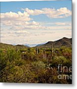 Saguaro National Park Az Metal Print
