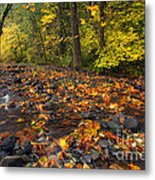 Scattered About Metal Print