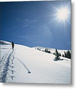 Scott Cooper Backcountry Skiing Metal Print