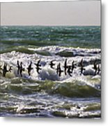 Single File Metal Print