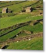 Slea Head, Dingle Peninsula, County Metal Print