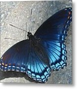 Smoky Mountain Butterfly Metal Print