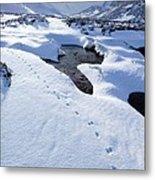Snowy Landscape, Scotland Metal Print