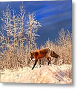 Solo Hunter Metal Print