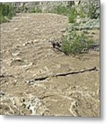 Spring Flood, Nicola River, Canada Metal Print by Kaj R. Svensson