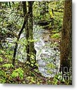 Stream Monongahela National Forest Metal Print
