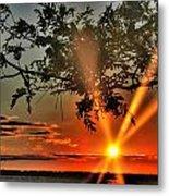 Summers Breeze Sunsets Through Tress Metal Print