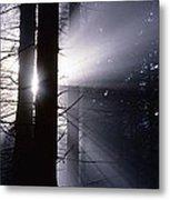 Sun Breaking Through Mists Metal Print by Ulrich Kunst And Bettina Scheidulin