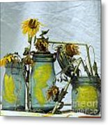 Sunflowers .helianthus Annuus Metal Print by Bernard Jaubert