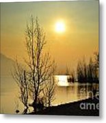 Sunlight Over A Lake Metal Print