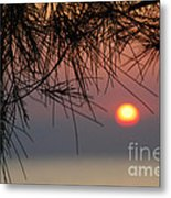 Sunset In Zanzibar Metal Print by Alan Clifford