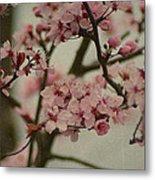 Sweet Spring Metal Print by Terrie Taylor