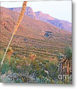 The Colors Of Evening Metal Print