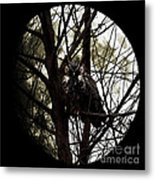 The Night Owl And Harvest Moon Metal Print