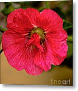 The Red One Metal Print