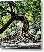 Tree Of Life Metal Print by Kenneth Mucke