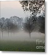 Trees And Fog Metal Print