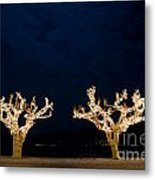Trees With Lights Metal Print