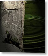 Turtle Enjoying The Sun Metal Print